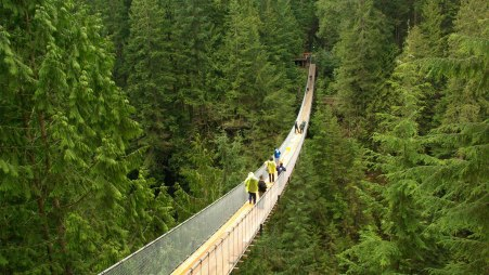 capilano-suspension-bridge-high-resolution-wallpapers-1920x1080