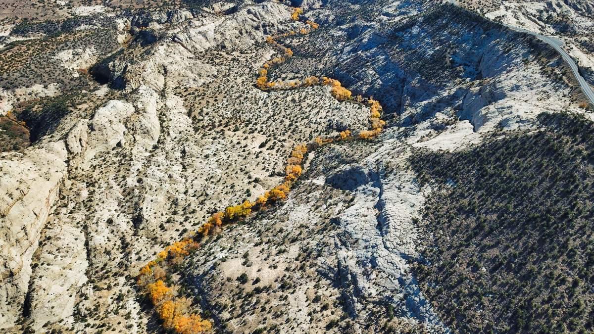 Calf Creek and BoulderCreek